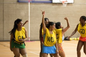 A sceptic&#8217;s guide to <br/>Back to Netball