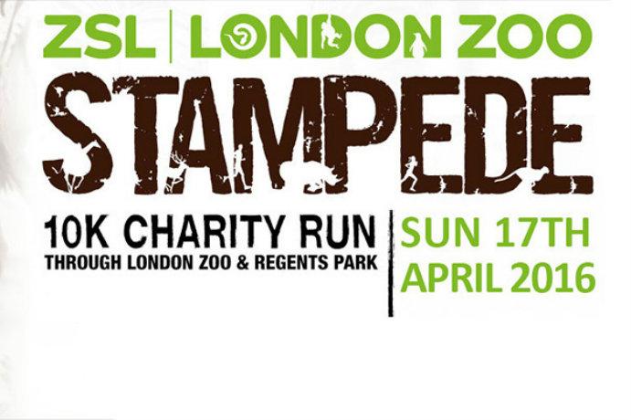 London Zoo stampede